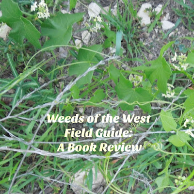 Weeds of the West: A Field Guide Review