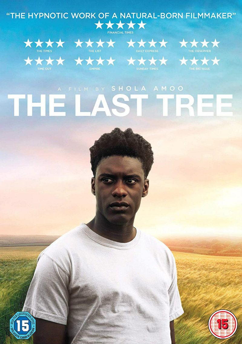 the last tree dvd