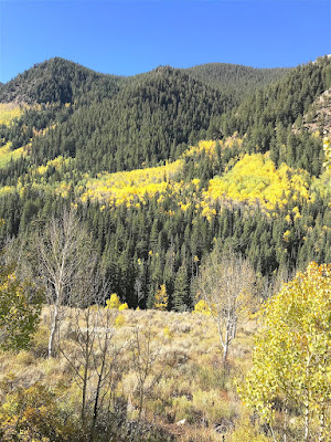 along Castle Creek Road, Aspen