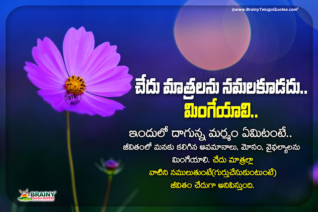 telugu quotes on life, best life changing words in telugu, nice 20 life changing motivational quotes hd wallpapers