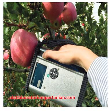 Alat ukur kualitas buah