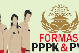 Syarat mendaftar CPNS dan PPPK tahun 2021