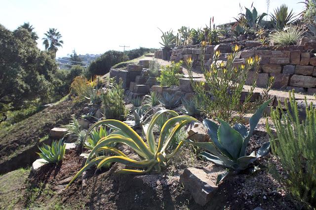 Hillside Garden parially completed