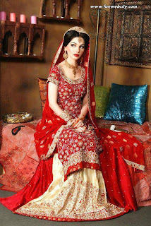 Indian Dress Wedding 86 Cool Bridal Photo Shoot Picture
