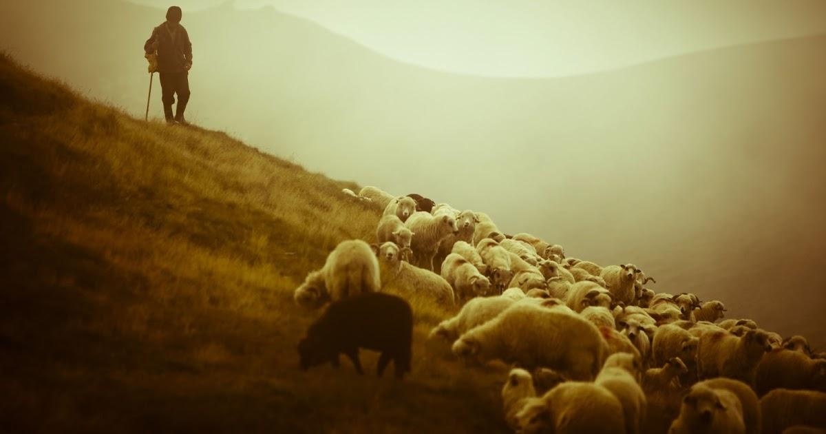 """Армен Мкртумян """"Паси овец Моих"""""""