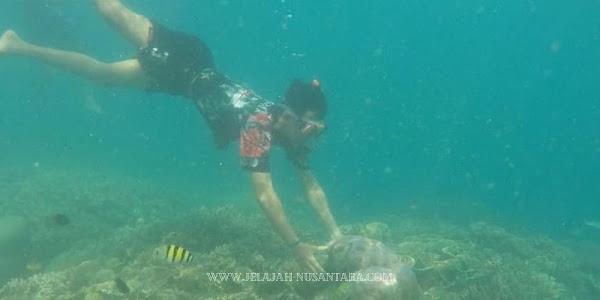 fasilitas open trip wisata pulau harapan
