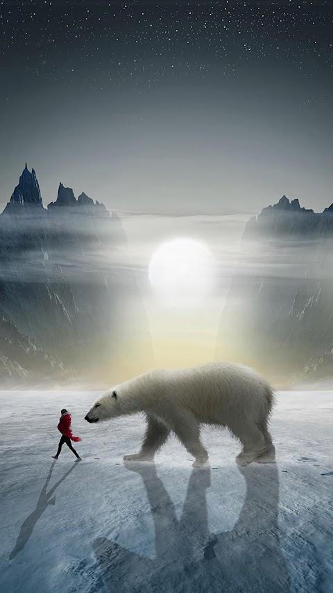 Cô gái và gấu trắng
