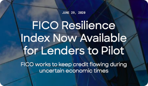 FICO Resilience Index