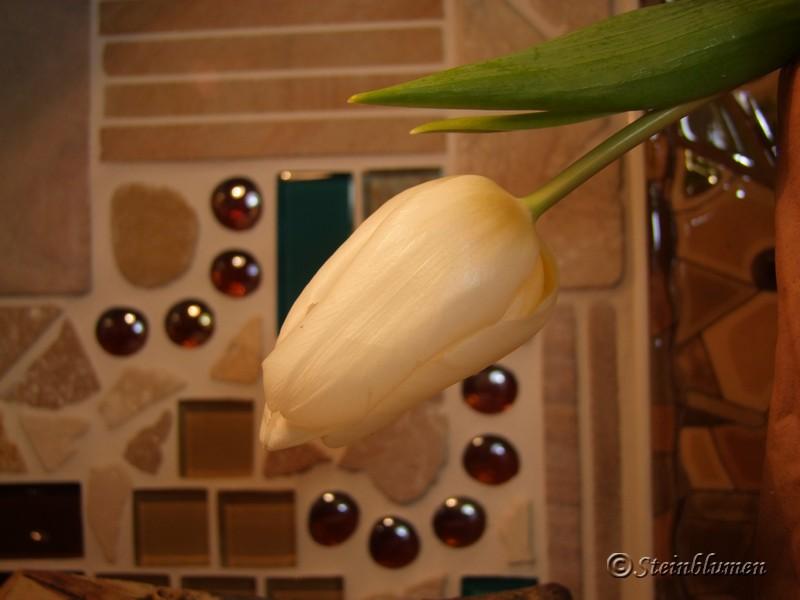 Winterdeko mit Tulpen