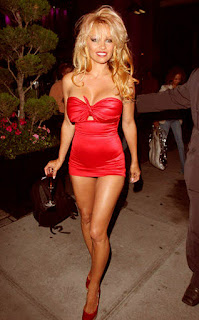 Pamela Anderson Sizzling Pic