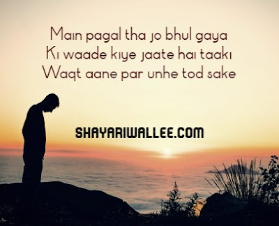 fake promise shayari in hindi