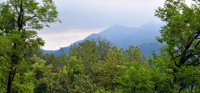 italy, italia, country, countryside, sotto il monte, lombardia, forest, lomatunnelmia, mountains