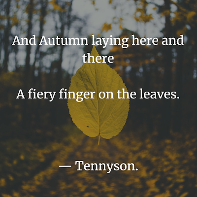 inspirational nature sayings about autumn
