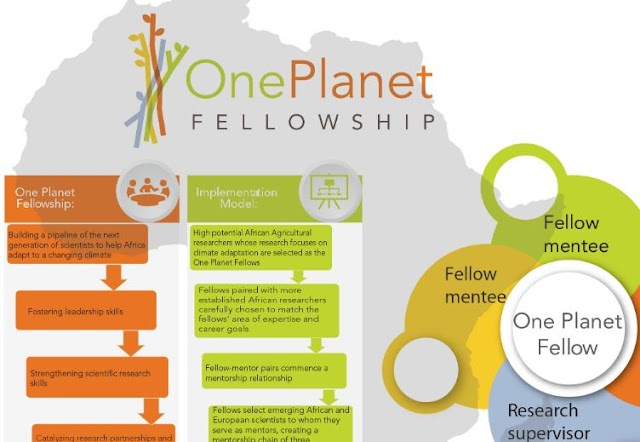 The One Planet African Women in Agricultural Research and Development Fellowship 2020