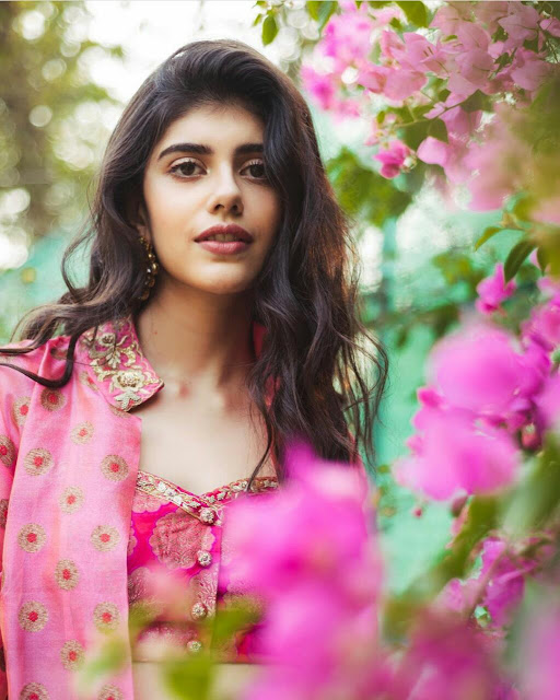 Latest 30 Gorgeous Sanjana Sanghi Pics 2020