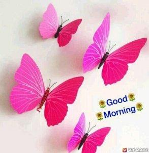 Good Morning Imag