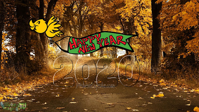 Happy New year 2020 HD Nature Background Images Download Free