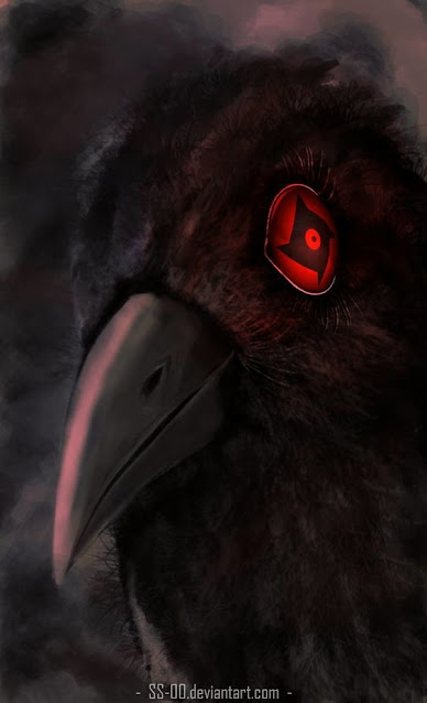 Gambar burung gagak itachi