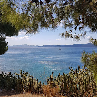PLF, ταξίδια για Ελλάδα