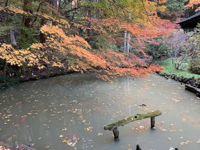 安楽寺境内の池
