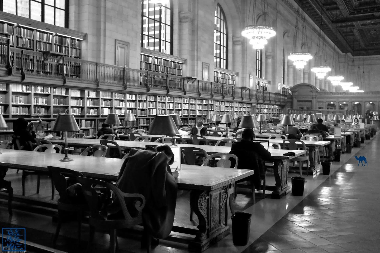 Le Chameau Bleu - Bibliothèque de New York