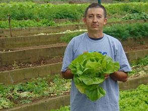 Instituto cultiva horta orgânica para alimentar crianças carentes
