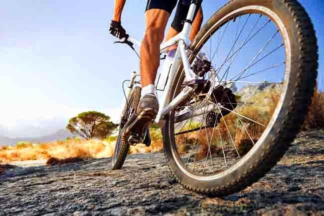 La Física De Las Bicicletas: Espacio Para Educación Física / Physical Education Site