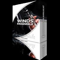 Download Sonex Audio - Woodwinds Ensemble KONTAKT Library