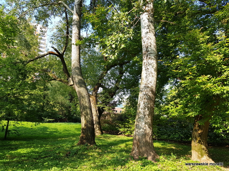 Warszawa Warsaw Bielany parki warszawskie teren zielony Ruda