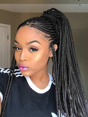 24+ ways To Do Feed In Ponytail with Side Braids Hairstyles
