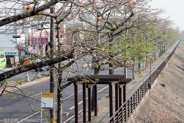 台中東勢|東勢河濱公園|東勢木棉道|自行車人行步道|陽光草坪|休閒好去處
