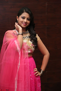 Geethanjali sizzles in Pink at Mixture Potlam Movie Audio Launch 020.JPG