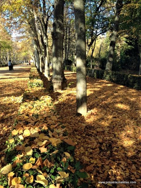 parques y jardines en Madrid en Otoño