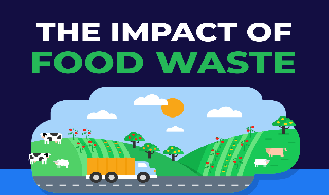 The Impact of Food Waste #infographic