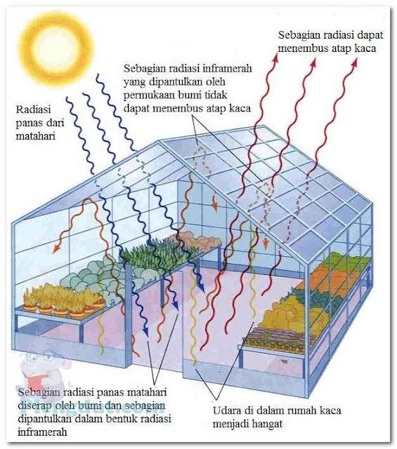 Ilutrasi gambar dari efek sebuah rumah kaca