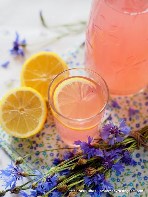 napoj chabrowy, lemoniada kwiatowa, wyroby domowe, przetwory, platki kwiatow, wino modrakowe, modraki