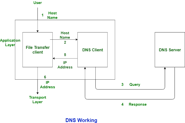 Web Hosting, Web Hosting Reviews, Compare Web Hosting, DNS, DHCP