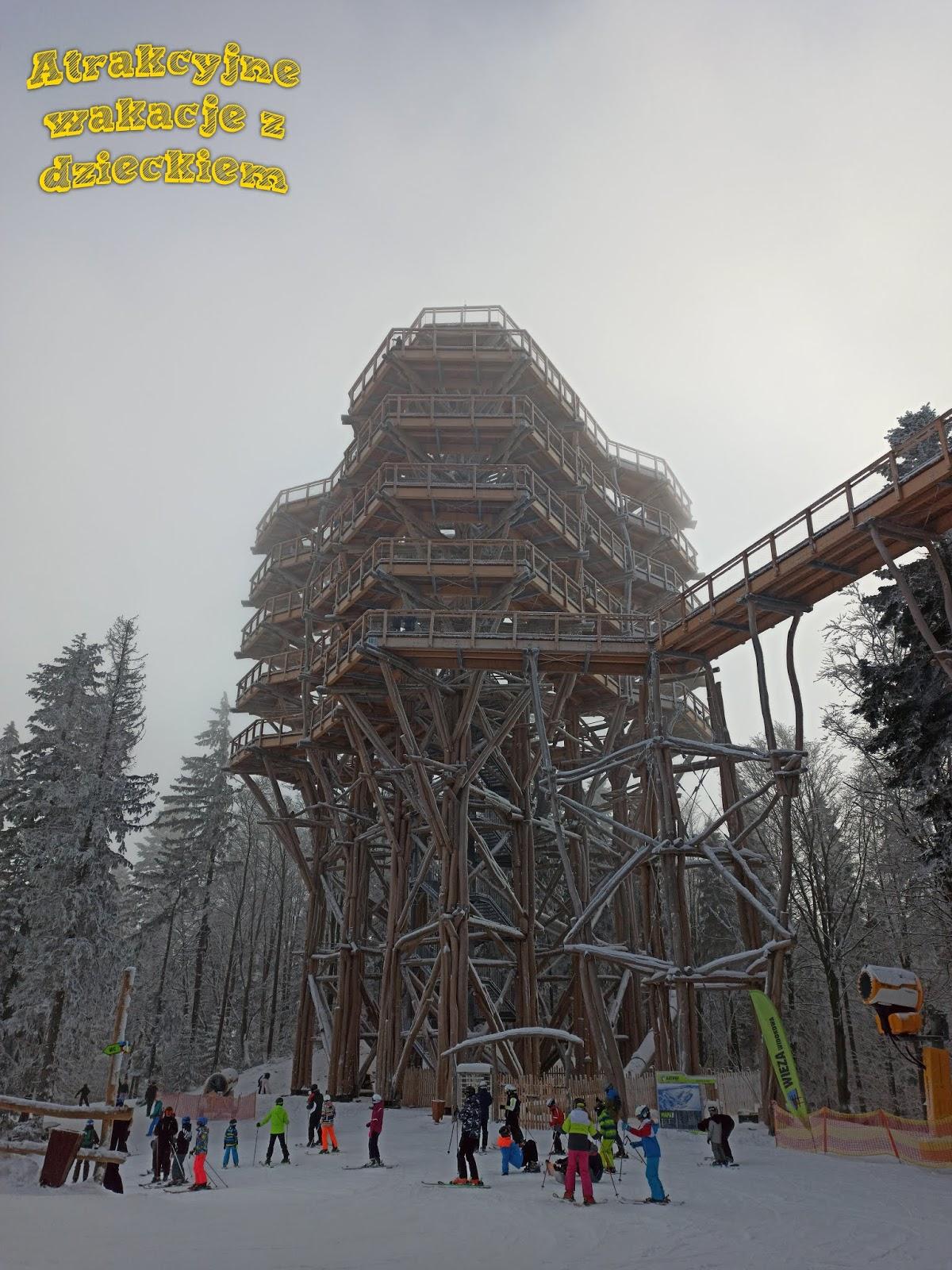 Wieża Widokowa Krynica - Wieża w koronach drzew
