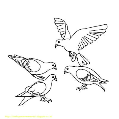 Gambar Mewarnai Burung - 10