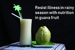 Resist illness in rainy season with nutrition in guava fruit