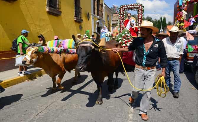 tradiciones, desfile, cultura,