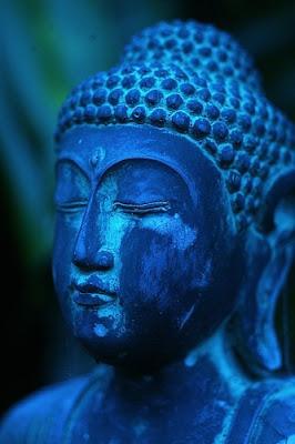 buddha - We've Got it Pinned!