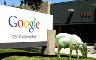 As part of their green initiative, Google regularly rents goats to mow the lawns of their mountain view HQ The employees claim they find it calming to see goats outside the windows.