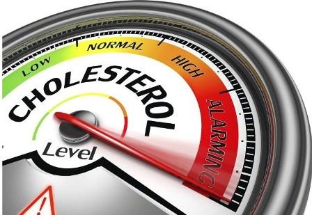 Tanaman Obat Herbal Untuk Atasi Kolesterol Tinggi
