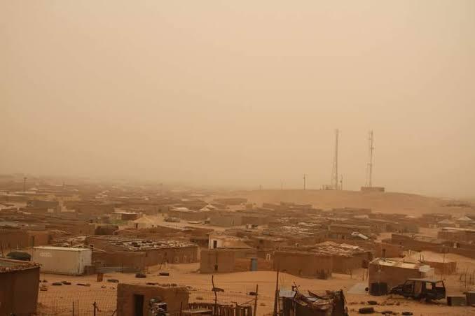 """El F. Polisario acusa a las autoridades españolas y canarias de ser """"cómplices"""" del """"expolio"""" de los recursos naturales del Sáhara Occidental."""