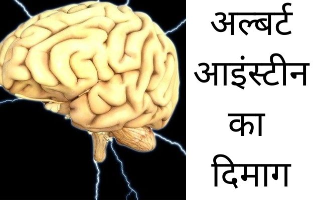 Secret of Albert Einstein Brain, who is stolen brain of albert einstein