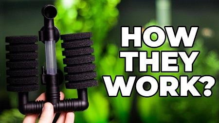 How Double Bio Sponge Filter Works