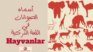أسماء الحيوانات في اللغة التركية