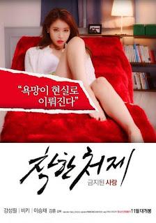 Good Sister in Law Forbidden Love (2015)