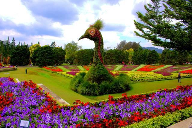 tempat ngabuburit di cianjur yang seru - taman bunga nusantara